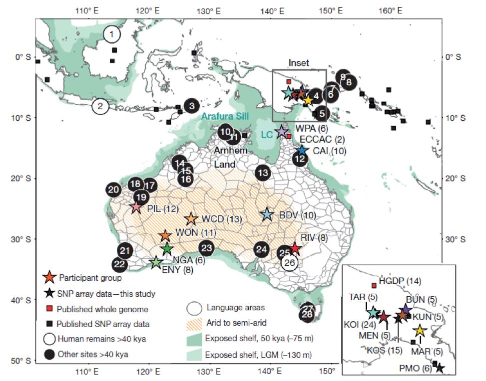 Рис. 5 Локализация образцов, собранных в Австралии и Меланезии  (Malaspinas 2016).